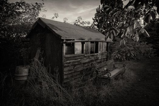 The Shed by eternumviti