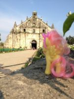 Fluttershy at Ilocos Province by DON2602