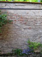 wall with flowers - stock by stock-of-aestchen