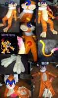 Monferno Pokemon Costume by omtay