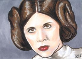Princess Leia PSC by AshleighPopplewell