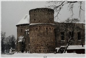 Cesis Castle by Fritz-Ed