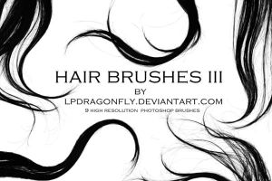 hair brushes III by lpdragonfly
