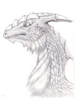 dragon by LilleahWest