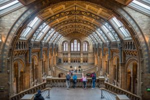 Natural History Museum, London by StefanJanisch