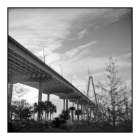 2016-019 Arthur Ravenel Jr. Bridge by pearwood