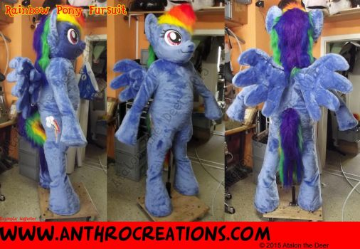RD 2015 Fursuit Pony Horse with a Rainbow Tail by AtalontheDeer
