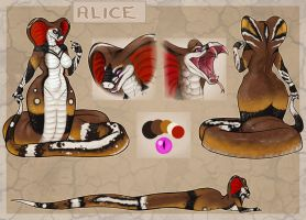Alice Ref Sheet by Blattaphile