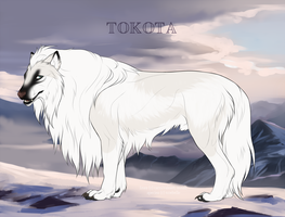 Tuhka 15518 by TotemSpirit