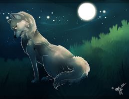 under the moonlight. by dayylights