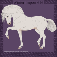 Winter Import 616 by ThatDenver