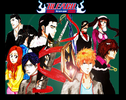 Bleach 2011 by AdinaVo