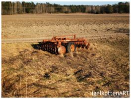 The Abandoned Country by igelkotten