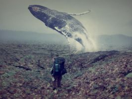 ID4_I_see_a_whale by RADIVILOVSKAY