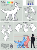 Avilope Anatomy Guide by Dogquest