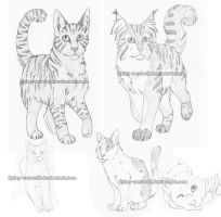 First Cat Sketches by NathalieNova