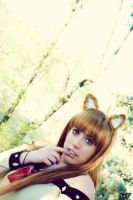 Cosplay Horo 44 by SaFHina