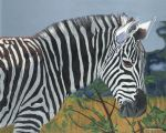 Boomerang (young zebra) by GuitarWars