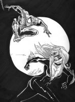 Spider-Man and The Black Cat by Henley420
