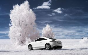 Audi TT IR Part I by myINQI