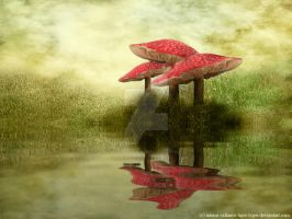 Fly Agaric Reflection by Tiger-tyger