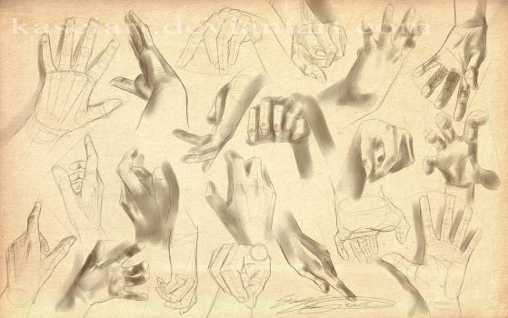 Hand study by KaseiArt