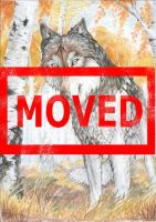 MOVED: A wolf and a birch by OssaDigitorumManus