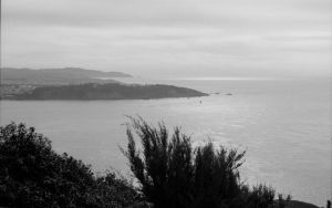 SF Coast WP by 17thletter