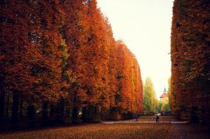 Autumn in the City II by Freggoboy