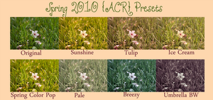 *Spring Presets Set by chupla