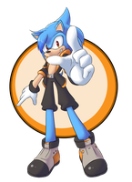 RQ - Shiron the Hedgehog 2 by OyOy