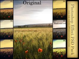 Poppies PSD Pack by Eve-the-Angel1399