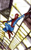 Spider-Man Night Swing - CP by MaverickTears