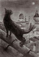 Black Cat in the city by The-mind-of-Mikey
