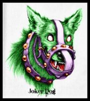 Joker Dog by jokercrazy