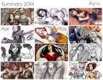 Summary - 2014 by Ay-u