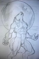 werewolf drawing 7 by tribalwolfie