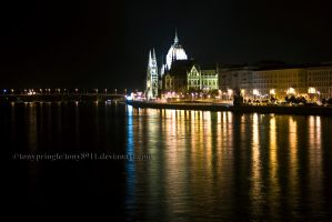 Parliament, Budapest by TonyPringle