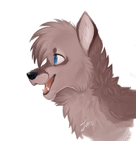Just a little wolf drawing by picklesquidly101