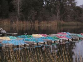 paddle boats at rest by JWilsonArts