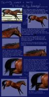 Painting manes + Tails by Unknownandfrantic