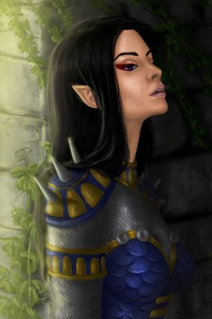 NWN: Hero of Neverwinter by mariatresh