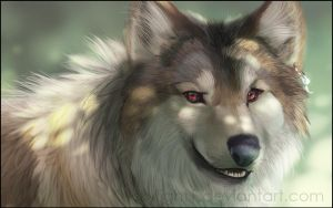 Red Eyes by 1skylight1