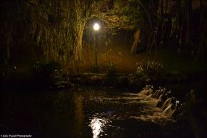 Peasholm At Night by Lady---Vengeance