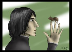Severus Snape by Thrior