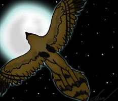 :.:Midnight Flight:.: by wolvine