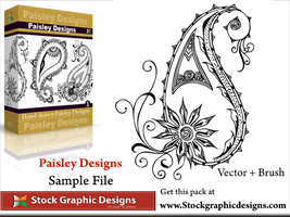 Paisley Designs Vector Pack by Stockgraphicdesigns