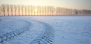 Winter in Holland  VI by Betuwefotograaf