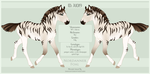 A1019 Nordanner Foal by SWC-arpg