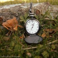 Time has passed version 1 by FrancescaDelfino